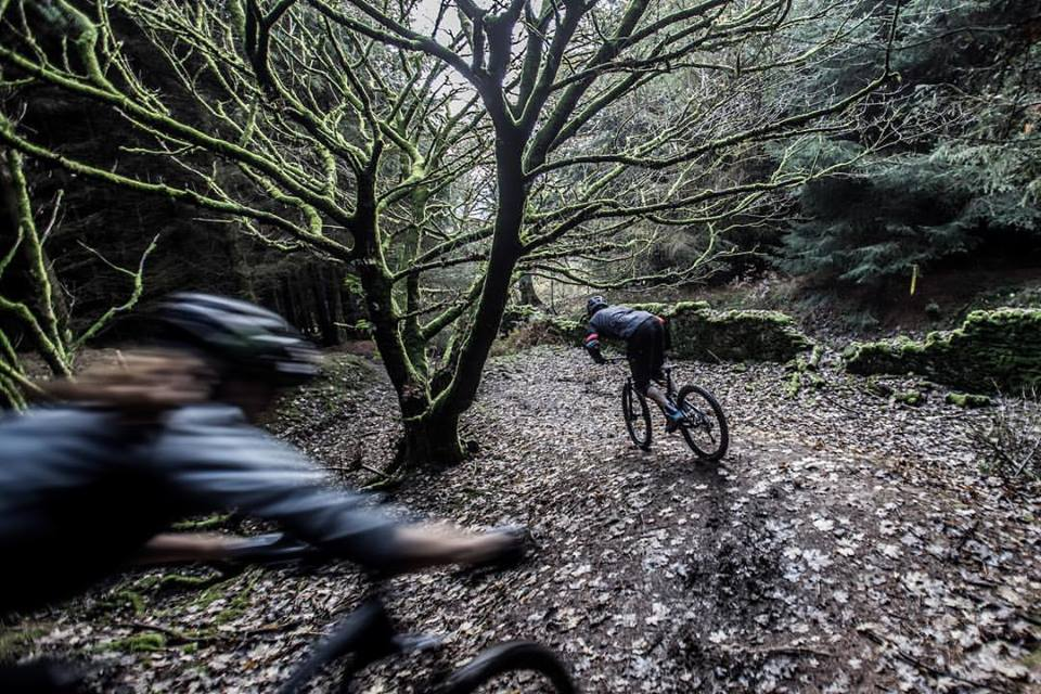 Cafall XC Trail - Diversion in Place